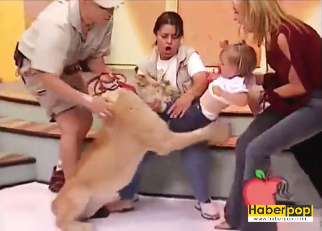Aslan-bebeğe-canlı-yayında-saldırdı,-annesi-gülerek-izledi-videosu