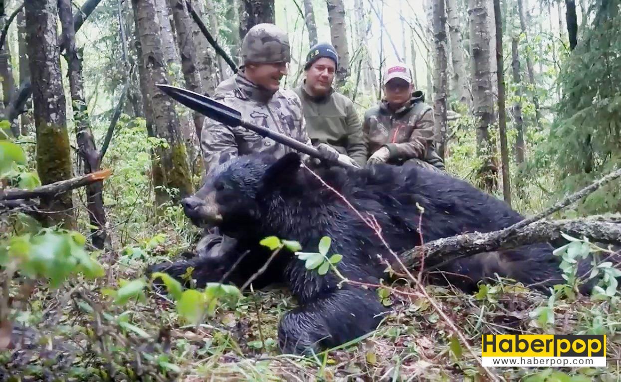 Mızrakla-ayıyı-öldüren-avcı-videosu