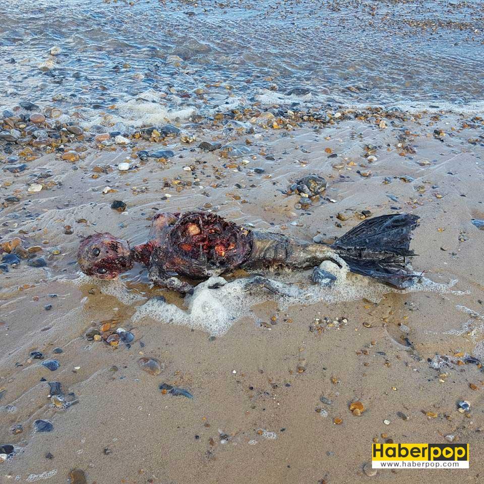 olu-deniz-kizi-sahile-vurdu-iddiasi