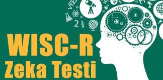 Wisc-r Zeka Testi Nedir Kimler Uygulayabilir?-Wisc-rNasıl Yapılır?