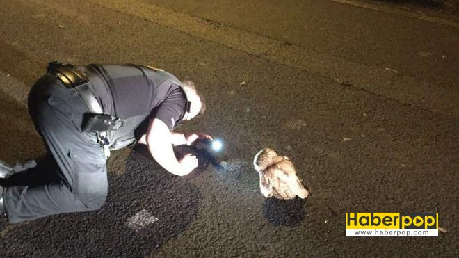 asi baykus polise karsi gelince neredeyse tutuklaniyordu