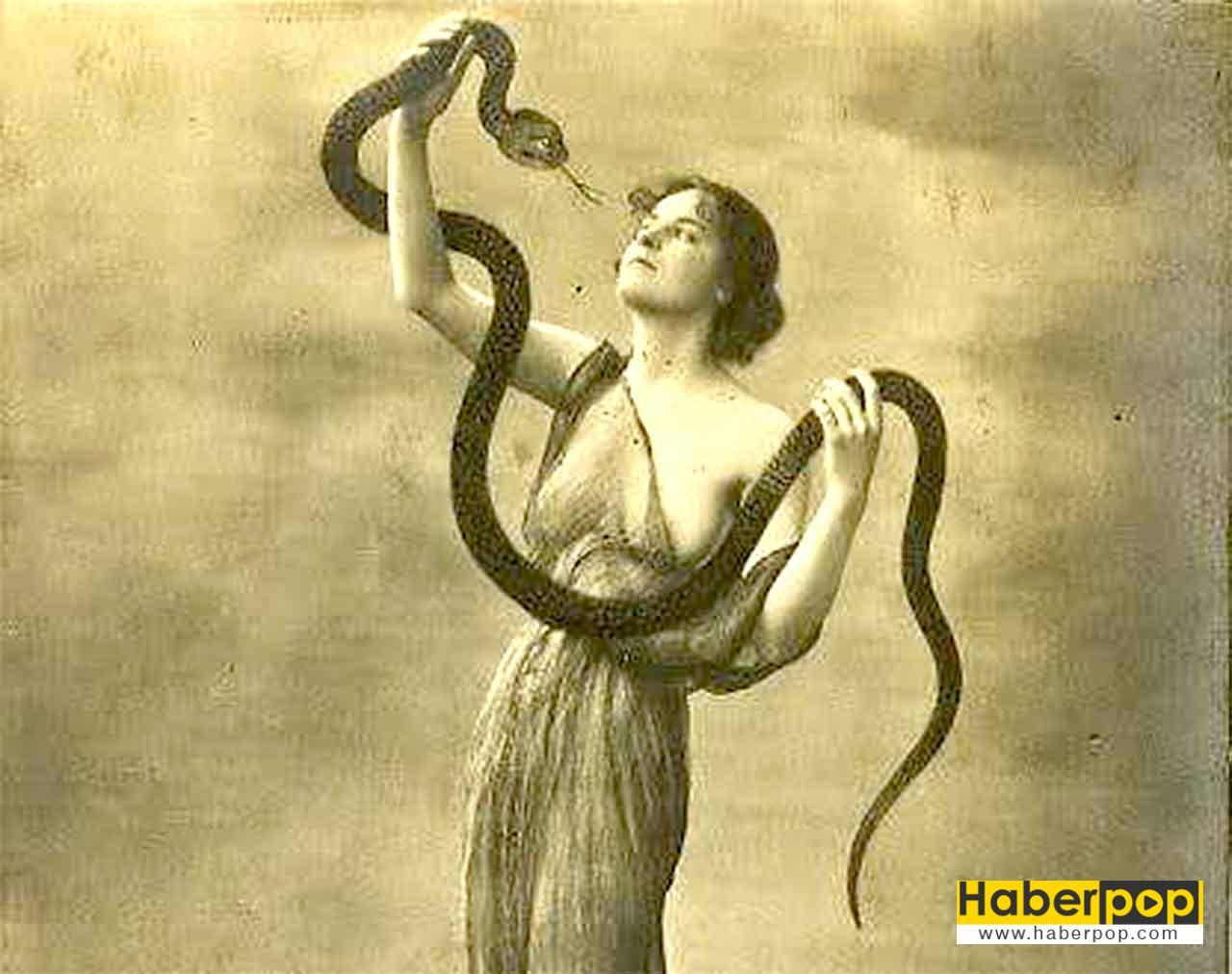 Rüyada yılan görmek ne anlama gelir, neye işarettir - Rüya tabirleri
