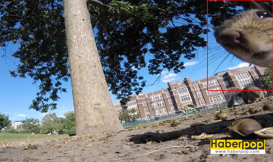 sincap-kamerayı-çaldı-videosu
